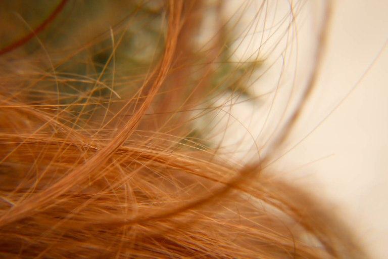 ClarissaHelman-Hair